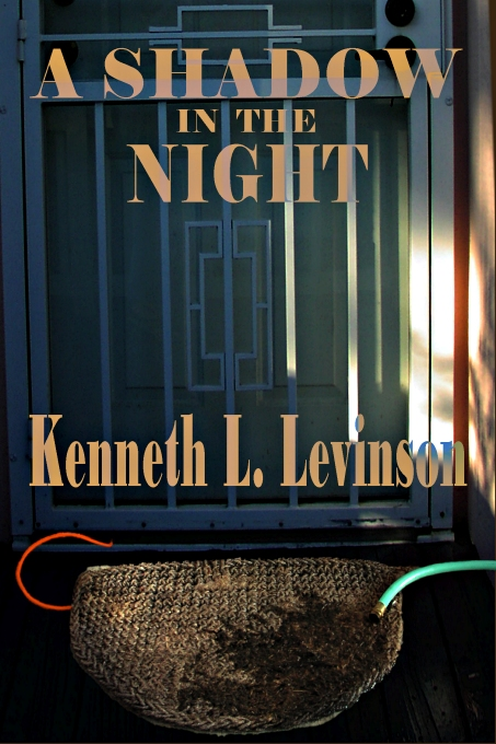 A Shadow in the Night by Kenneth L. Levinson